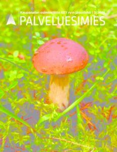 thumbnail of palveluesimies-3-2016